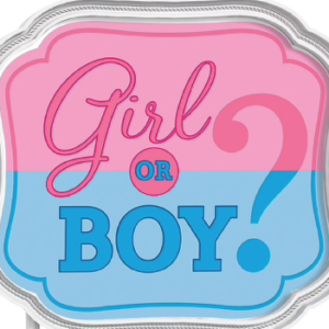 Gender Reveal Options